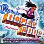 Wanadoo Top 40 Hits 2002, Vol. 1