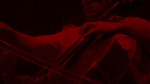 The Bluffer: Chamber Music