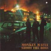 Shoot the Boss