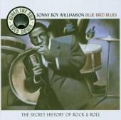When the Sun Goes Down, Vol. 8: Bluebird Blues