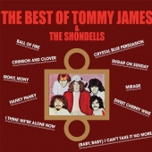 The  Best of Tommy James & the Shondells [Relayer]