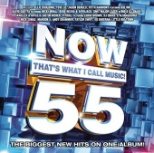 Now That's What I Call Music! 55