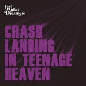 Crash Landing in Teenage Heaven