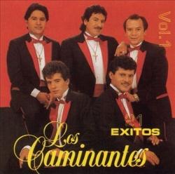 Los Caminantes - 21 Exitos, Vol. 1