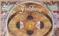 fishbone discography rar