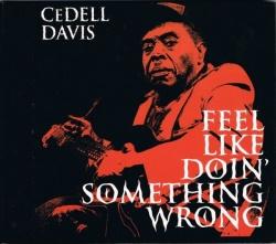 Feel Like Doin' Something Wrong