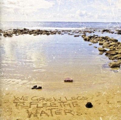 We Grew Legs to Flee the Water