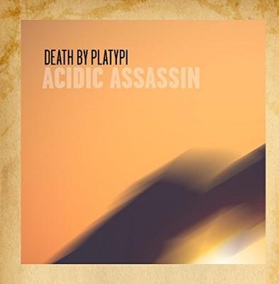 Acidic Assassin