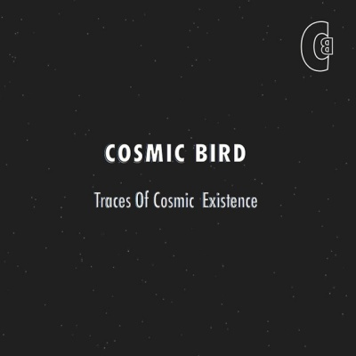 Traces of Cosmic Existence