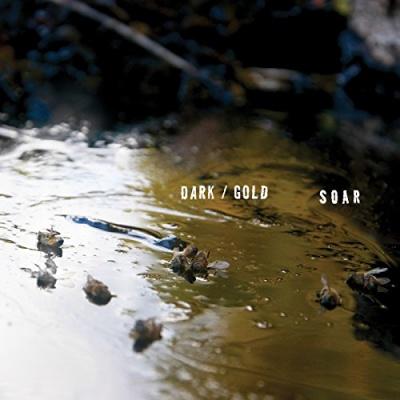 Dark/Gold