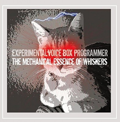 The Mechanical Essence of Whiskers