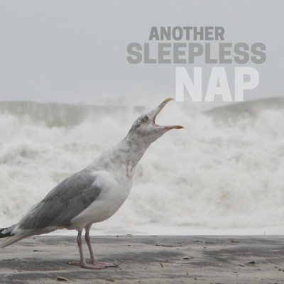 Another Sleepless Nap