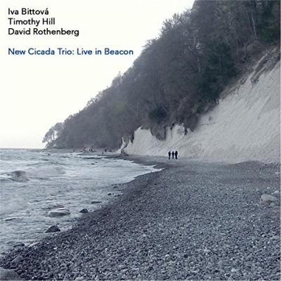 New Cicada Trio: Live in Beacon