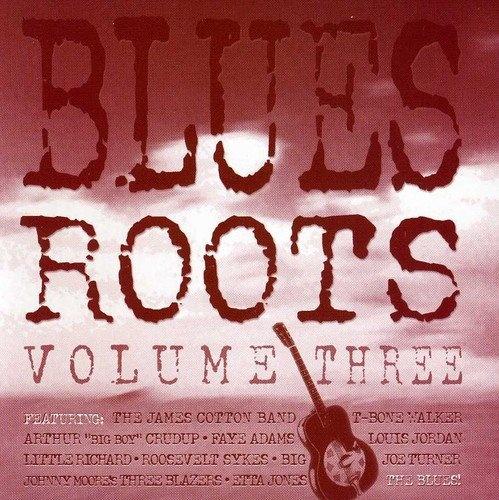 Blues Roots, Vol. 3