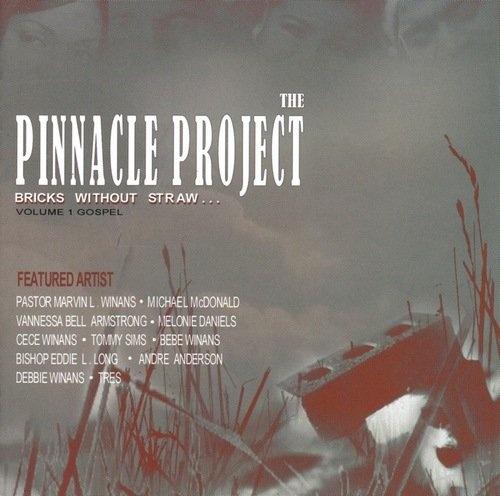 The Pinnacle Project, Vol. 2: Last Say So