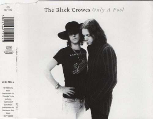 Only a Fool [Australia CD Single]