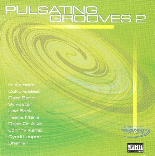 Pulsating Grooves, Vol. 2