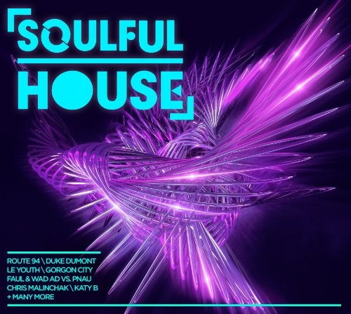 Soulful House [Sony]