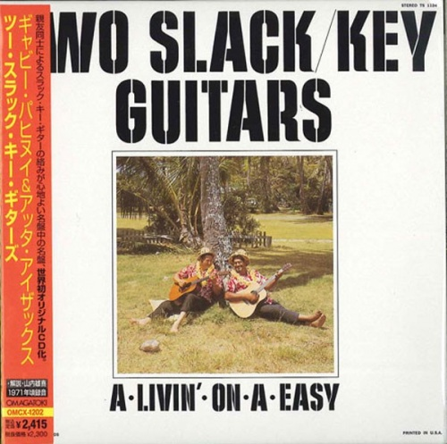Two Slack Key Guitars