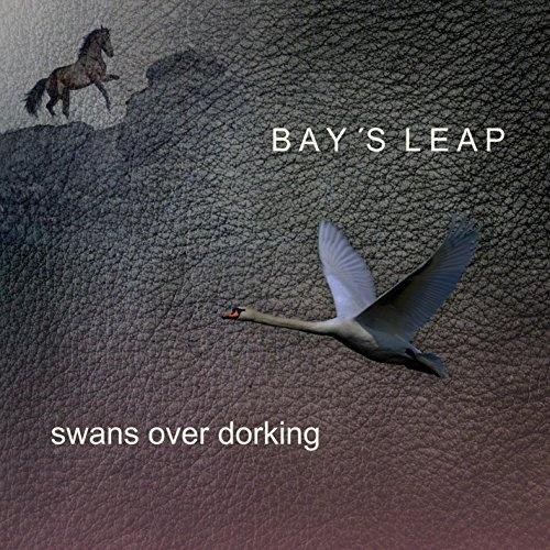 Swans Over Dorking