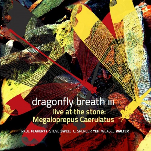 Dragonfly Breath III: Live at the Stone: Megaloprepus Caerutalus