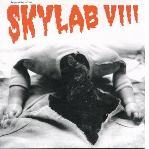 Skylab VIII