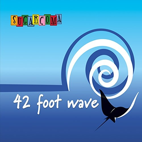 42 Foot Wave