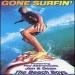 Gone Surfin'